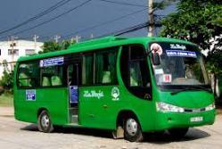 mailinh-logo-bus